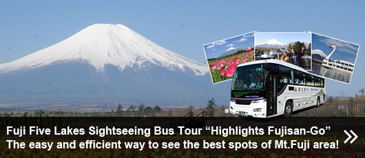 This is the ONE to meet your requirements to enjoy Mt.Fuji